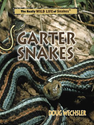 cover image of Garter Snakes