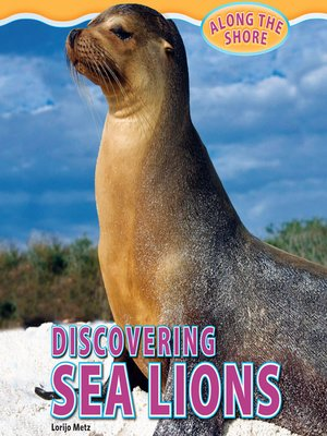 cover image of Discovering Sea Lions