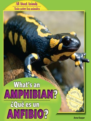 cover image of What's an Amphibian? / ¿Qué es un anfibio?