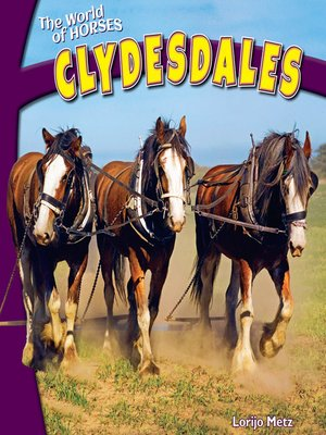 cover image of Clydesdales