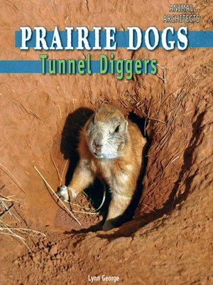 cover image of Prairie Dogs