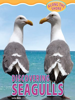 cover image of Discovering Seagulls