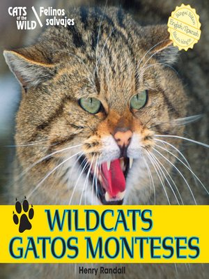 cover image of Wildcats / Gatos monteses