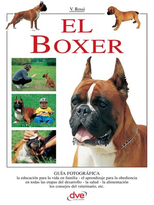 cover image of El Boxer