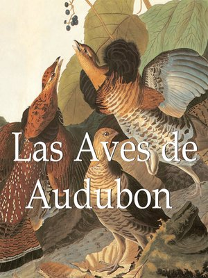 cover image of Audubon's Birds