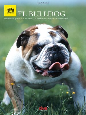 cover image of El bulldog
