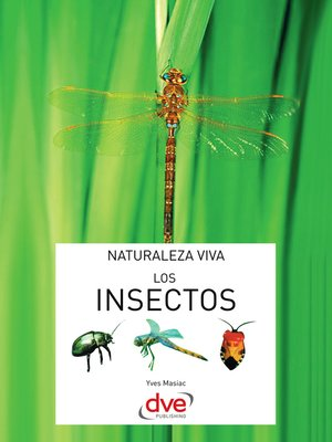 cover image of Los insectos