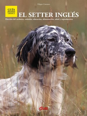 cover image of El setter ingles