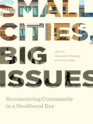 cover image of Small Cities, Big Issues