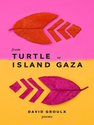 cover image of From Turtle Island to Gaza