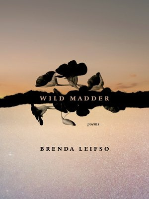 cover image of Wild Madder