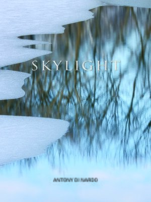cover image of Skylight