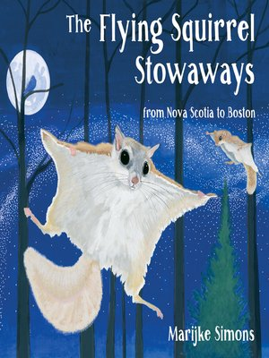 cover image of The Flying Squirrel Stowaways