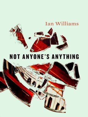 cover image of Not Anyone's Anything