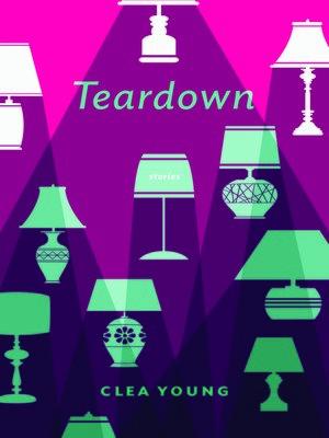 cover image of Teardown