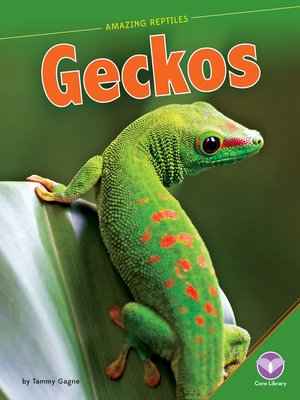 cover image of Geckos