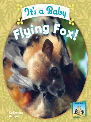 cover image of It's a Baby Flying Fox!