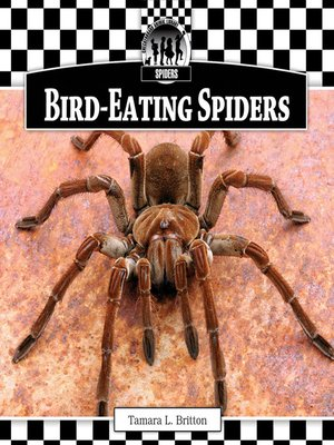 cover image of Bird-Eating Spiders
