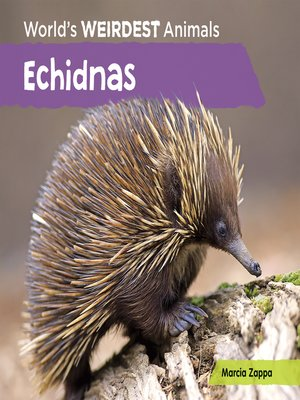 cover image of Echidnas