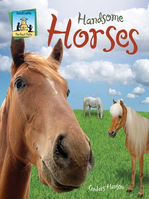cover image of Handsome Horses