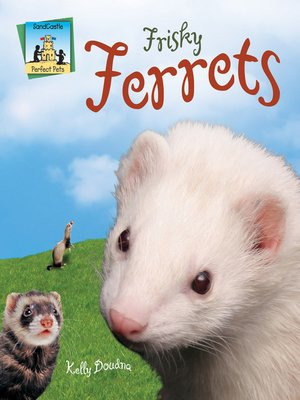 cover image of Frisky Ferrets