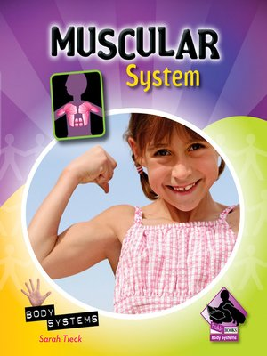 cover image of Muscular System