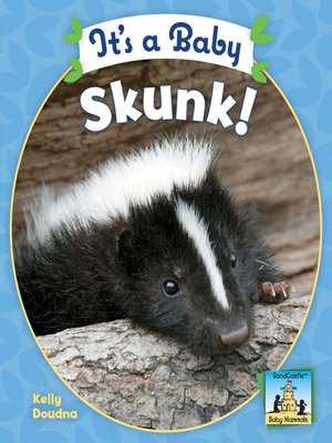 cover image of It's a Baby Skunk