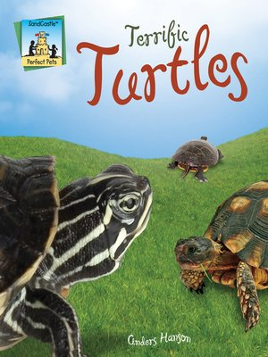 cover image of Terrific Turtles
