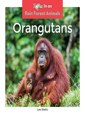 cover image of Orangutans