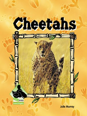 cover image of Cheetahs
