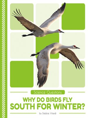 cover image of Why Do Birds Fly South for Winter?