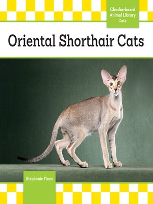 cover image of Oriental Shorthair Cats