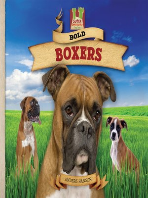 cover image of Bold Boxers