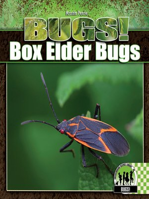 cover image of Box Elder Bugs