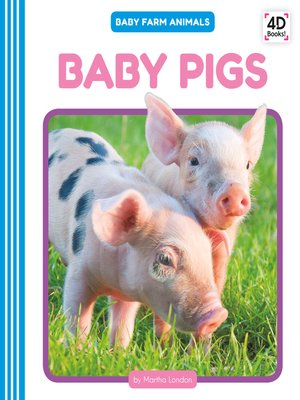 cover image of Baby Pigs