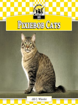cover image of Pixiebob Cats