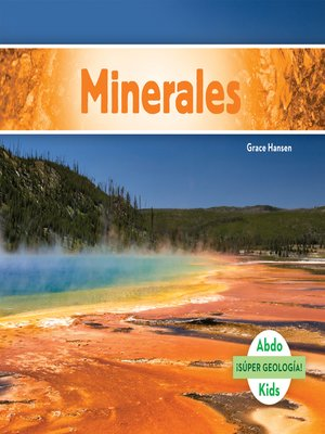 cover image of Minerales (Minerals)