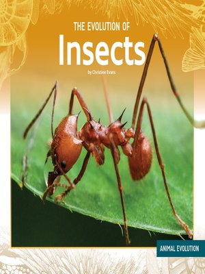 cover image of The Evolution of Insects