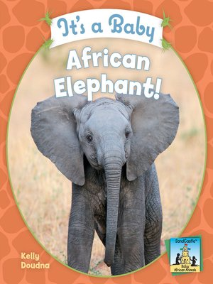 cover image of It's a Baby African Elephant!