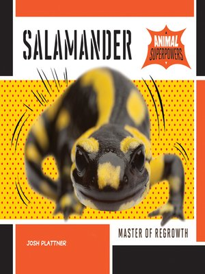 cover image of Salamander