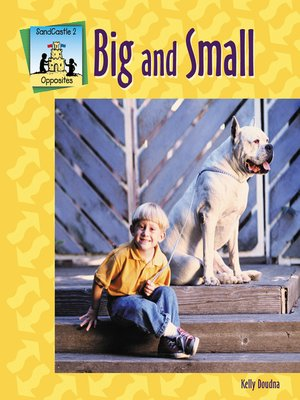 cover image of Big-Small