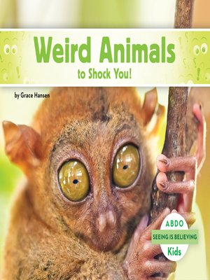 cover image of Weird Animals to Shock You!