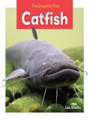 cover image of Catfish