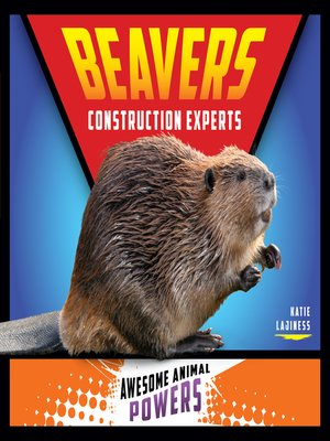 cover image of Beavers: Construction Experts