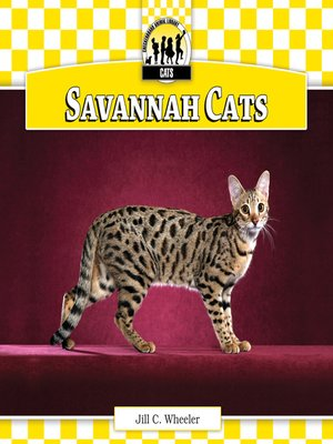 cover image of Savannah Cats