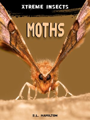 cover image of Moths
