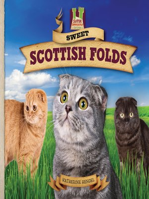 cover image of Sweet Scottish Folds