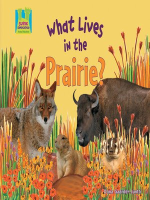 cover image of What Lives in the Prairie?