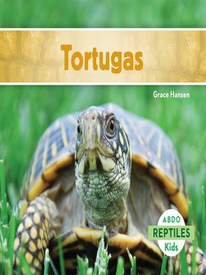 cover image of Tortugas