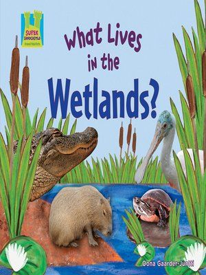 cover image of What Lives in the Wetlands?